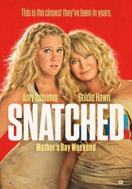 Дочь и мать её / Snatched